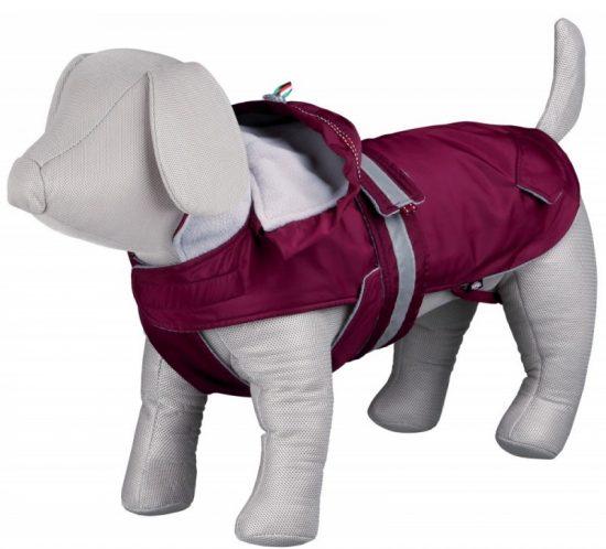 Abbigliamento per cane