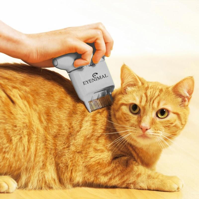 Antipulci per gatto